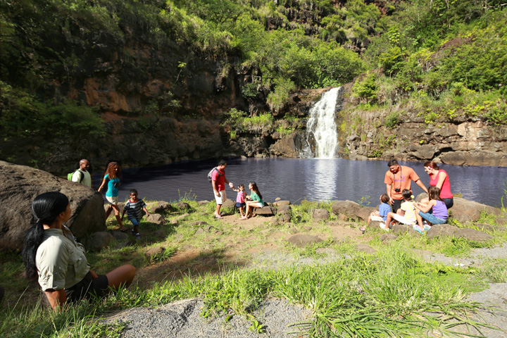 Waimea Falls – North Shore Experience
