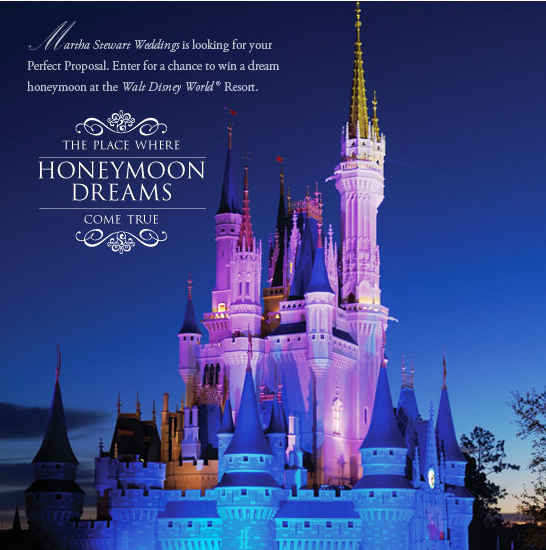 related keywords suggestions for disney honeymoons With disney world honeymoon packages